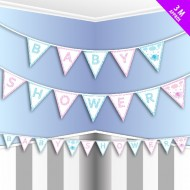 Pink & Blue Baby Shower Bunting