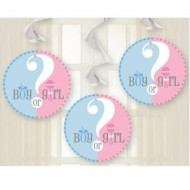 Gender Reveal Baby Shower Hanging Swirls